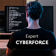 CyberForensic & Offensive Security Team